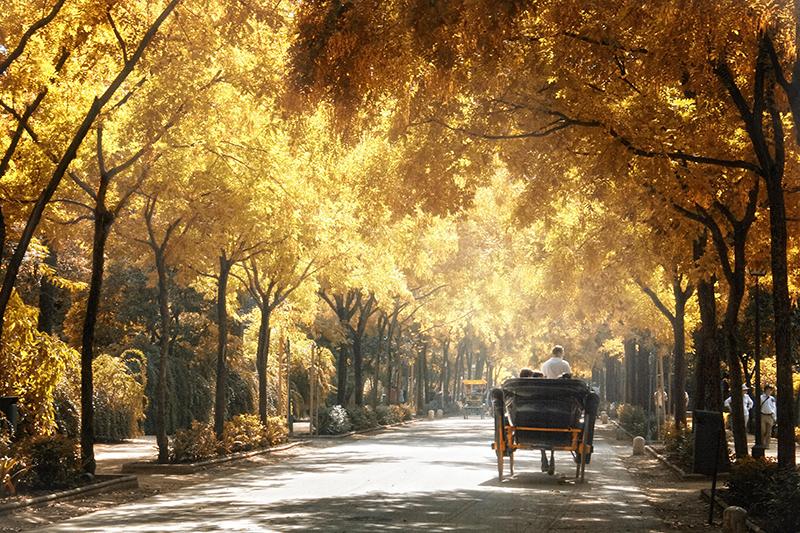 Paisagem de outono em Sevilha